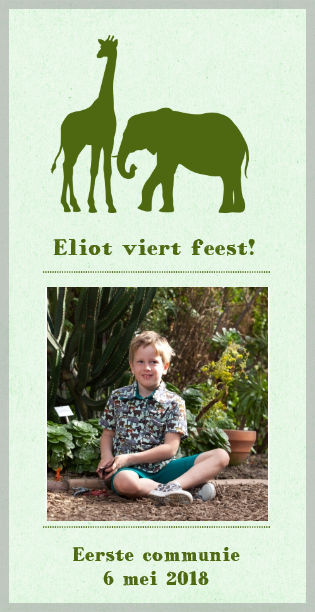 groene-uitnodiging-met-silhouette-dieren-en-fotokader